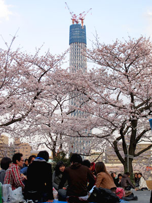 100403sumida-tower.jpg
