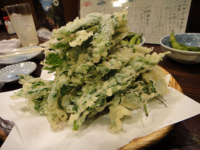 110208ashitaba.jpg
