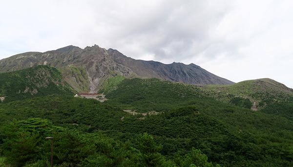 170810sakura2.jpg