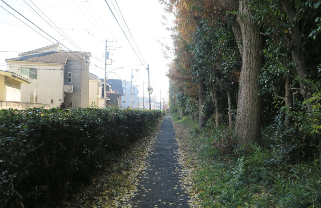 191214zensho_ikegaki.JPG
