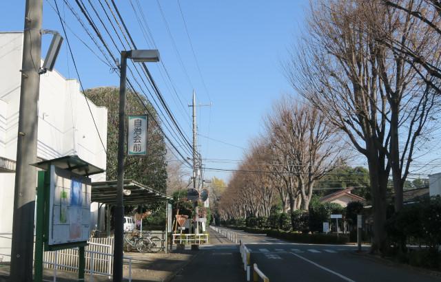 191214zensho_street.JPG