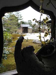 060205daitoku.jpg